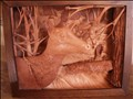 Shadow box elk (copy)