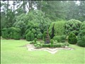 "Pearl Fryar's Topiary Work Aug. 22 Bishopville topiary artist Pearl Fryar's film ""A Man Named Pearl"" will be screened in Columbia Sept. 12. These are pictures of his work in his yard."